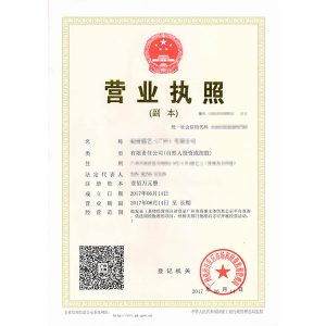 business license of company